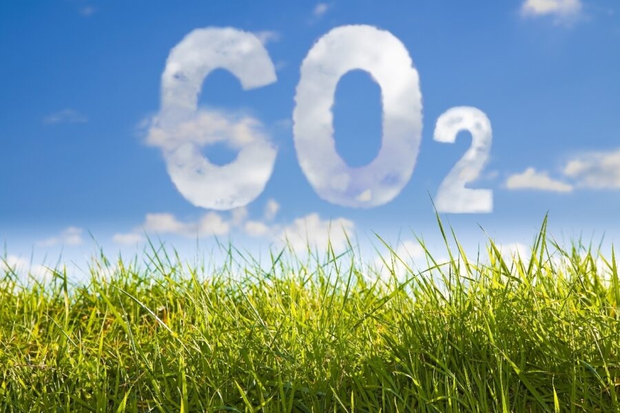 Co2 sized HD